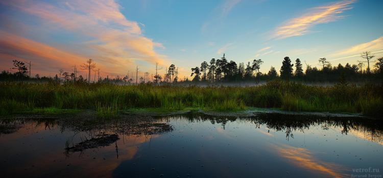 Закат на болоте.