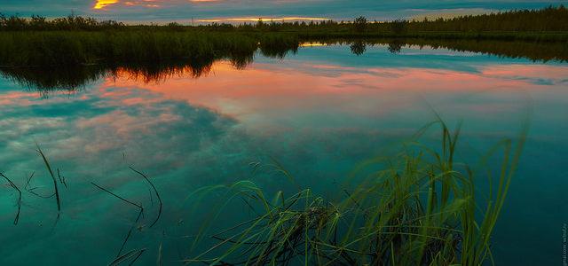 Прогулка на закате. 17 августа 2015.